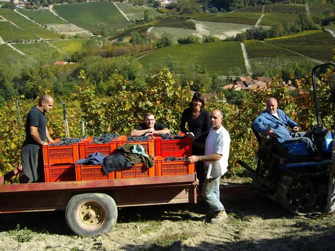 Image result for Podere Ruggeri Corsini Winery